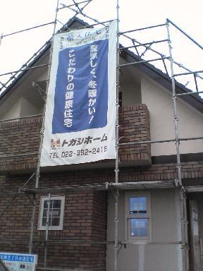 img20061107.jpg
